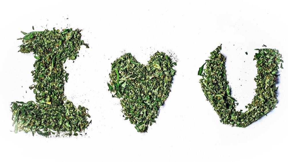 Любовь марихуана скачать бесплатно как влияет курение марихуаны на плод